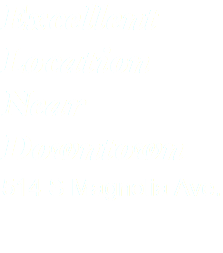 Excellent Location Near Downtown 514 S Magnolia Ave.